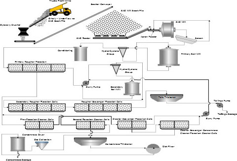Proposed Process Plant Flowsheet